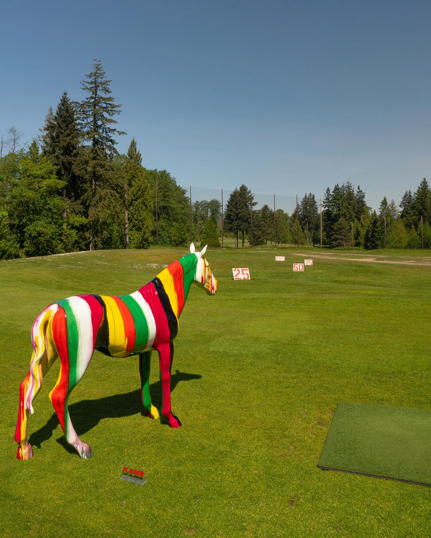 UBC Golf Club